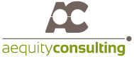 Aequity Consulting IT